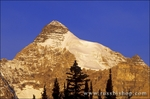 Morning light on the south face of Mount Athabasca, Columbia Icefields area, Jasper National Park, Alberta, Canada