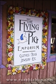 Sign at the Flying Pig Emporium, Dolores, Colorado