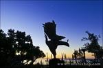 Phoenix statue at Nepenthe Restaurant, Big Sur, California