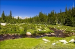 Unicorn Creek above Tuolumne Meadows, Yosemite National Park, California USA