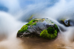 Mossy rock in the Merced River, Yosemite National Park, California USA