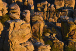 Eroded outcrops (Hoodoos) below Windy Point Vista, in winter sunset light. Santa Catalina Mountains.