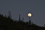 Moonrise, Santa Catalina Mountains, near Tucson.