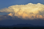 Summer thunderstorm over the Mustang Mountains, in sunset light.