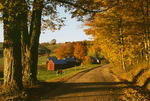 Autumn at Jenne Farm