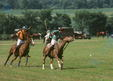 Polo Match, New Jersey