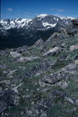 alpine tundra, 14,000 feet elevation, Rocky Mountain National Park, Colorado