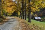 Autumn at Sleepy Hollow Farm, Vermont