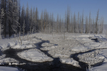 frozen marsh, Midway Geyser Basin, Yellowstone