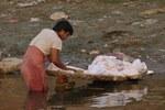 washing laundry in the Ganges River, Varanasi, India