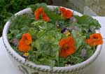 Salad with healthy mixed greens, herbs, edible flowers.