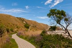 New Zealand, South Island, Kaikoura. Kaikoura Peninsula Walkway.