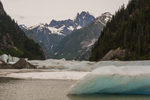 North America, USA, Alaska, Tongass National Forest, Shake's Lake, icebergs