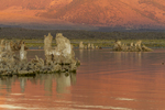 North America, USA, California, Mono Lake, sunrise, tufas
