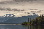 North America, USA, Alaska, Tongass National Forest
