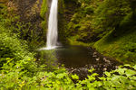 North America, USA, Oregon, Columbia River Gorge, Horsetail Falls