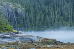 North America, USA Alaska, Tongass National Forest, Ford's Terror, fog
