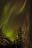 North America, USA, Alaska, Chena Hot Springs, aurora borealis and stars