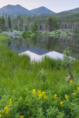 North America, USA, Colorado, Rocky Mountain National Park, Sprague Lake reflection