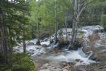 North America, USA, Colorado, Rocky Mountain National Park, cascade on Glacier Creek