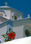 Hibiscus flower and Greek church
