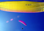 Paraglider meets paraglider