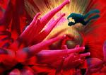 Dive Fantasy: scuba diver meets anemone