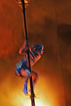 Cirque du Soleil Vegas Show