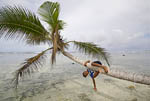 Boy hangs from palm tree