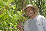 Native man in mangrove swamp