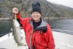 Fresh caught Atlantic cod