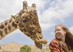 woman and giraffe having fun and laughing