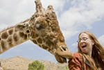 woman and giraffe laughing together