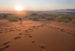 Visitors walk at dawn among sand dunes of Sossusvlei