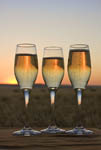Celebration of sunset with champagne and wine in the Sossusvlei, Namibia, Africa.