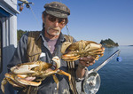 Fisherman holds up freshly caught dungeness crabs.