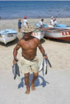 Man carries fresh fish up from the beach as fishermen clean fresh caught fish in the morning while pelicans and other birds crowd in for scraps on the north beach of the Malecon, the famous beach strip of Mazatlan, Mexico.