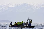 Tourists ride in a small rubber boat to see birds near the town of Bodø along the coast of Norway.