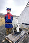 Elderly Sámi man in traditional clothing stands by his tent with one of his reindeer near the town of Honningsvag, Norway.