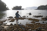 Woman looks at sea stars and anemones in low tide pools.