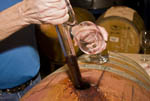 Drawing red wine from a barrel using a