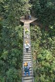 sky bridge at a zipline adventure