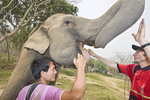 Tourist learnS how to greet & feed 'his' elephant at Patara, elephant rescue farm