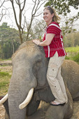 Woman visitor brushes dirt off the back of 'her' elephant at elephant rescue farm