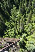 View looking down at treetops from the middle of the Kelly Creek Trestle, highest and longest of the train bridges along the Hiawatha Trail, a bicycle and hiking trail in Idaho, USA.