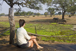 Visitor watches elephants from deck at Robin Pope Safari Lodge in Zambia