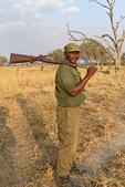 Scout with his rifle guards hikers on walking safari in Zambia.