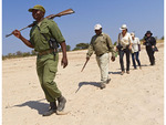 Scout with rifle leads people on safari hike across dry riverbed in South Luangwa National Park, Zambia, Africa.