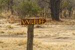 Sign in South Luangwa National Park point to where animals can be viewed. Zambia, Africa.