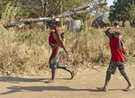 Young boy and women with baby in sling  carry firewood for cook fires in their village, Kawaza, Zambia, Africa.